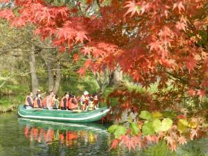 秋のクリアボート